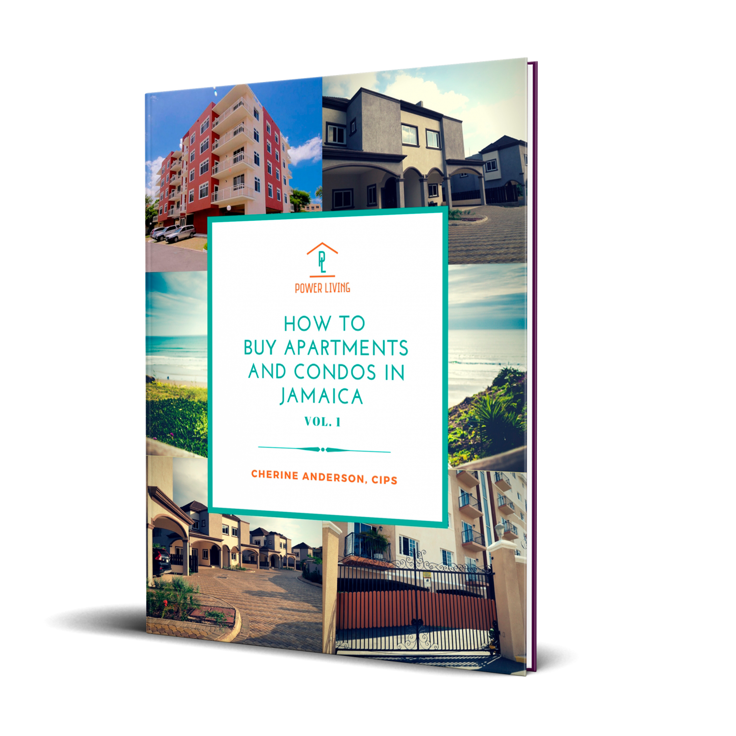 Ebook_How_TO_Buy_An_Apartment_CherineAnderson
